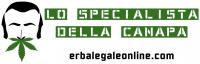erbalegaleonline.com