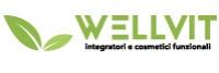 wellvitonline.com